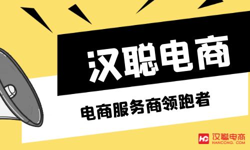 北京淘宝网店代运营公司