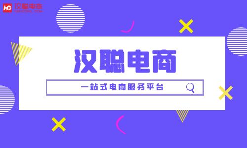 京东商城 苏宁易购